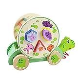 Tomaibaby Kinder Holz Nachziehspielzeug Schildkröte Geometrische Spielzeug Ziehtier Push Pull Spielzeug Farben Formen Sortierspiel Holzspielzeug zum Ziehen Lauflernhilfe für Baby Jungen Mädchen