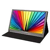 YILANJUN Tragbar Display (17,3 Zoll/Full HD 1920 × 1080) Business Gaming-Monitor (Anzeige/Überwachung, 1080P, 60 Hz, 2,5 mm Audio + Mini HDMI + TYP C) Schwarz, 411 × 258 × 11 mm