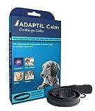 ADAPTIL Calm Halsband, für kleine Hunde, Halsumfang bis max. 37,5 cm