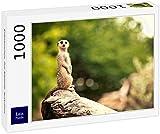 Lais Puzzle Erdmännchen, Zoo Adelaide, Australien 1000 T