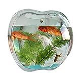 YINTE Wandmontierter Fischtank, Aquarien Fischschüssel Glas Pflanzenhalter Home Decor Wandbehang Blumentöpfe Wand Hanging Goldfish Bowl Betta Aque Tank 230MM
