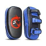 EYLIFE 2PCS Box Pratzen Boxen, Schlagpolster, Handpratzen, Boxpratzen, Pratzen Kampfsport, Kickboxen, Muay Thai, MMA, 36x19x9cm,Blau