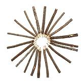 jojofuny 1 Tasche 20Pcs Zweig Bleistifte Natürliche Farbige Bleistifte Zweig Bleistifte Holz Bleistift Zeichnung Bleistift Schattierung Werkzeug für Kinder Erwachsene Kü