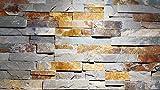 Wandverblender Riemchen Klinker Wandverkleidung Naturstein für Kamin, Wand, Innen- und Außenb