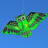 ZSM Drachen, Neue Cartoon Eule Fliegende Drachen für Kinder Erwachsene Freizeitsportspielzeug (Nicht mit Kite String) YMIK (Color : Green)