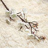 HGDD Künstliche Blumen Künstliche Blume Kirschfeder Pflaumenblüte Pfirsich Zweig 30 cm-60cm Seide Blume Baum Blütenknospe Für Hochzeitsfest Dekoration (Color : 6)