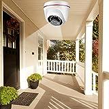 LZKW Kuppelkamera, HD-Nachtsicht-Überwachungskamera im Freien, Infrarot 4 in 1 School for Home(720P PAL Format)