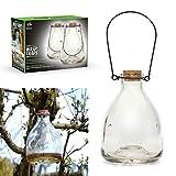 CKB Ltd 2er Set Wasp Catcher Trap Wespenfänger Wespenfalle Glas Glasflasche - Traditionelles Attraktives Design Insektenfalle Trap Garten Schädlingsbekämpfung