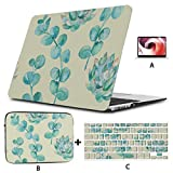Mac Book Pro deckt kreative Retro-Eukalyptusblatt-MacBook-Hüllen Hard Shell Mac Air 11'/ 13' Pro 13'/ 15' / 16'mit Notebook-Hülle für MacBook 2008-2020-Version ab