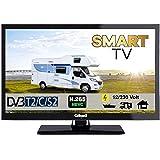 Gelhard GTV2422 Smart TV 24 Zoll DVB/S/S2/T2/C USB, 12V 230 Volt WLAN