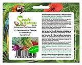 Stk - 1050x F1 Gemüsesaatgut 11 Sorten Garten Pflanzen - Samen #429 - Seeds Plants Shop Samenbank Pfullingen Patrik Ipsa
