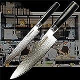 Küchenmesser Set 2 Stück VG10 Japanisch Damaskus Stahlmesser Kochkleber Speisekochwerkzeuge G10 Griff Geschenkbox Messerset (Color : White)