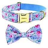 BLEIES Hundehalsband mit Schleife, Hunde-Fliege, Mädchen-Hundehalsband, niedliches Hundehalsband für große, mittelgroße und kleine Hunde (Himmelblau, L)