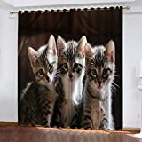 2 Stück Blickdicht Vorhang Verdunklungsvorhang Mit Ösen - DREI Katzen,Thermogardine Ösenvorhang Verdunkelungsgardinen Für Schlafzimmer Wohnzimmer 220X215Cm