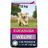 Eukanuba Welpenfutter mit Lamm & Reis für große Rassen - Trockenfutter für Junior Hunde, 12 kg