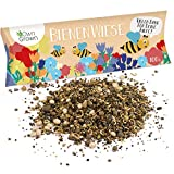 Bienenwiese Blumenmischung: 100g Premium Bienen Saatgut für bunte Bienenweide, Bienen und Hummelmagnet - bienenfreundliche Blumensamen Mischung ein- und mehrjährig - Blumenwiese Samen von OwnGrow