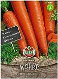 Sperli Premium Möhren Samen Rote Riesen 2 ; Große kegelförmige Rüben ; Karotten Samen für ca. 1000 Karotten