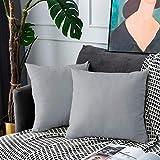 UPOPO 2er Set Samt Kissenbezug Dekorative Einfarbig Kissen Kissenhülle Kissenbezüge Dekokissen Zierkissen Sofakissen für Sofa Couch Schlafzimmer Wohnzimmer mit Reißverschlüsse 50 X 50cm Hellgrau