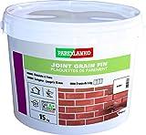 Parexlanko Fugendichtung, feine Körnung, Fugen bis 15 mm, für alle Arten von Plattenplatten, Briketts und Zierstein an Wänden, Weiß, Silber, 15 kg