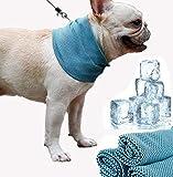 MEISHANG Hundehalsband Kühlend,Kühlung Kragen Hund,Kopftücher Kühlend Hund,Halstuch Kühlend Hund,Kühlendes Halstuch für Hunde,Hunde Kühlendes Halstuch(s)