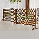 JHHL 2 Stücke Garten-Fechten, Gitterplatten für Externe Privatsphäre Zaunbildschirm, Trellis für Kletterpflanzen im Freien, Gartenzaun-Grenze/Tierbarriere (Size : 110x160cm)