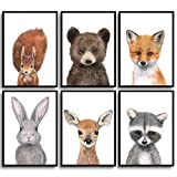 Frechdax® Kinder Poster Kinderzimmer Deko Bilder Waldtiere - Tiere des Waldes DIN A4 6er Set |