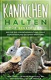 Kaninchen halten für Einsteiger: Wie Sie die Kaninchenhaltung ohne Vorerfahrung gekonnt meistern - inkl. Tipps zur Erstausstattung, bei Krankheiten und zur Dressur