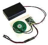 Talking Products MP3-Sound-Chip-Modul, 4 MB Speicher, mit AAA-Batteriebox, ideal für Modelle und Bastelarbeiten