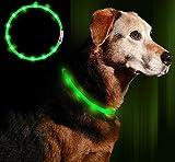 Anicoll LED Leuchthalsband Hunde Halsband USB wiederaufladbar - Längenverstellbarer Haustier Sicherheit Kragen für Hunde und Katzen- 3 Modus 12 Lichte(Grün)