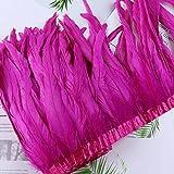 ASDFGH Natürliche Hahnenschwanzfedern Trim Band 25-30 cm Gefärbte Bunte Fasanenfeder für Hochzeit Tuch Dekoration Nähen Handwerk