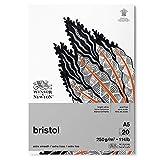 Winsor & Newton 6661544 Bristol Zeichenpapier im Block - 20 Blatt DIN A5, 250g/m², kopfgeleimt, strahlend weißes Papier für Zeichnungen mit technischen Stiften, Finelinern, Tusche, Markern, Airbrush