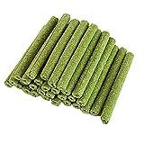 Zunbo 30 Stück Timothy Hay Grass Sticks Kauspielzeug Grass Sticks Molar Chews für Kaninchen Hamster Chinchilla Gerbil, Grün
