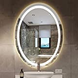 LBSI Badezimmerspiegel mit LED Beleuchtung, Wandspiegel Oval Design,Badspiegel mit Beleuchtung, Beleuchteten Kosmetikspiegel, IP44