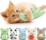 Dorakitten 5 Stück Katzenspielzeug Set : Katzenminze Spielzeug zum Kratzen Spielen und Kauen   Katzen Kissen für Katzen mit getrockneter Katzenminze
