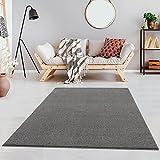Fashion4Home Teppich Wohnzimmer – Einfarbig Teppich, Uni Teppich fürs Kinderzimmer, Schlafzimmer, Arbeitszimmer, Büro, Flur und Küche - Kurzflor Teppich Hellgrau, Größe: 80x150 cm