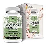 VITA1 L-Carnosin 500mg • 60 Kapseln (Monatspackung) • Glutenfrei, vegan, koscher & halal • Hergestellt in Deutschland