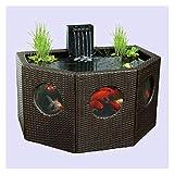 Aquariumzubehör Terrasse Teich Lily Twom Octagon/Half Moon Rattan Wickerwork Panelfenster Gartenwasser Funktion KOI Übergroße Fischtank oder Hydroponie Aquarium