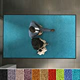 etm Hochwertige Fußmatte | schadstoffgeprüft | bewährte Eingangsmatte in Gewerbe & Haushalt | Schmutzfangmatte mit Top-Reinigungswirkung | Sauberlaufmatte waschbar & rutschfest (90x150 cm, Türkis)