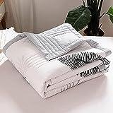 ommerdecke Kühlend Doppelseitig, Bettdecke für Sommer, Bettdecke Atmungsaktiv, Weiche Baumwolle Steppdecke für Menschen Kinder Baby 150 x 200 cm A1