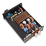 balikha HiFi Stereoverstärker Verstärker Klasse D Leistungsverstärker, 300 W X 2