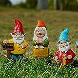 Jiaojie Miniatur-Zwergtiere, Gartenzwerg, Tiere, Gartenstatue, Gartenzwerg, Figuren, Feengarten, Zubehör, Geschenke, Outdoor, Garten, Dekoration, Ornamente, 10 Stück