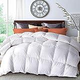 WarmKiss Bettdecke mit weißen Gänsedaunen, hypoallergen, mit Eckbändern, 100 % weicher Baumwollbezug, daunendichte Außenhülle für alle Jahreszeiten, Doppelbettgröße, 172 x 228 cm