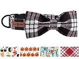 lionet paws Weich Baumwolle Fliege Hundehalsband mit Metall Verschluss Einstellbare Halsbänder für Kleine Hunde und Katzen, Hals 20-30
