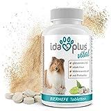 Ida Plus – Bierhefe-Tabletten mit Sollbruchstelle – optimale Pflege für glänzendes Fell & kräftige Haut - reich an B-Vitaminen, Mineralien & Spurenelementen – für ihren Hund & ihre Katze – 120 Stück