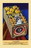 Werbepostkarte für Zitruspakete, Versand aus der indischen Rocks Fruit Company in Florida Poster Druck von Curt Teich & Company (24 x 36)