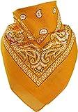 Harrys-Collection Unisex Bandana Bindetuch 100% Baumwolle (1 er 6 er oder 12 er Pack), Farbe:goldgelb