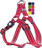 DDOXX Hundegeschirr Nylon, Step-In, Reflektierend, Verstellbar, Ausbruchsicher | für kleine & große Hunde | Brust-Geschirr Hund Katze Welpe Auto | Welpen-Geschirr Katzen-Geschirr | Rot, XXS