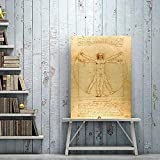 RZHSS Hd Art Classic Berühmte Malerei Vitruvian Man, Studie Von Leonardo Da Vinci, Poster Druckt Wandkunst Gemälde Auf Leinwand Dekoration 50X70Cm No Frame