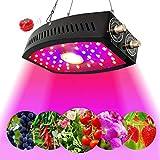 LED Pflanzenlampe 1100W , einstellbares Vollspektrum, einstellbares Seil, längere Lebensdauer, COB-Pflanzenlicht für die Keimung von Zimmerpflanzen, Sämling, Gemüse und Blumen (schwarz) (Weiß)