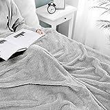 MIULEE Kuscheldecke Granulat Fleecedecke Flanell Decke Weich Flauschig Einfarbig Wohndecken Couchdecke Sofadecke Blanket für Bett Sofa Schlafzimmer Büro, 170x210 cm Hellgrau
